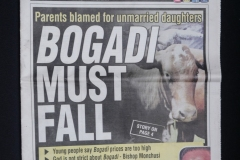 NEWSPAPER HEADLINES:  BOGADI <p>The cost of  bogadi , or bridewealth, has long been a subject  of complaint among Batswana though a charge of eight to  ten cows has been common for generations.</p>